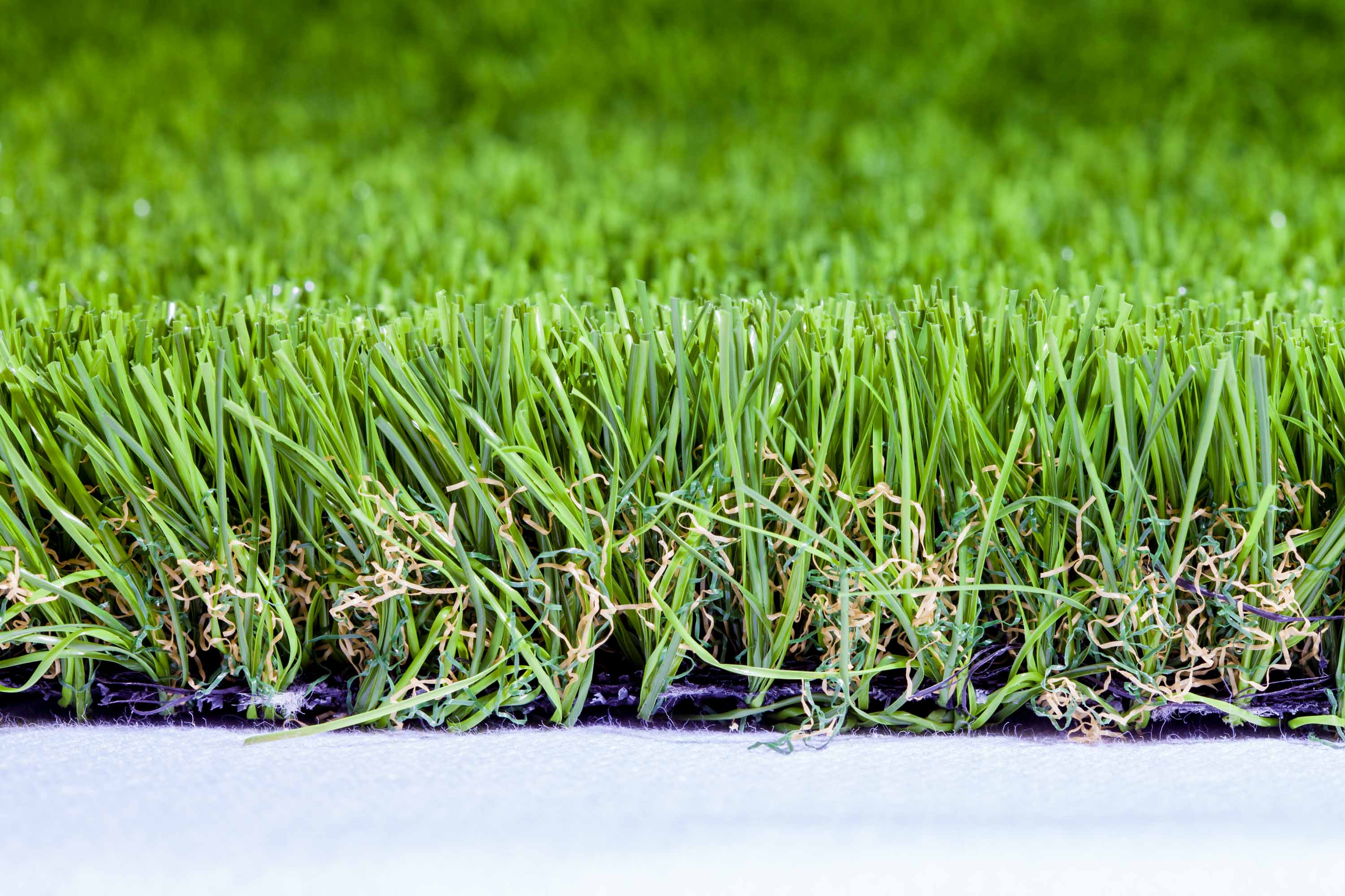 artificial grass - Landscapers Choice Lawn